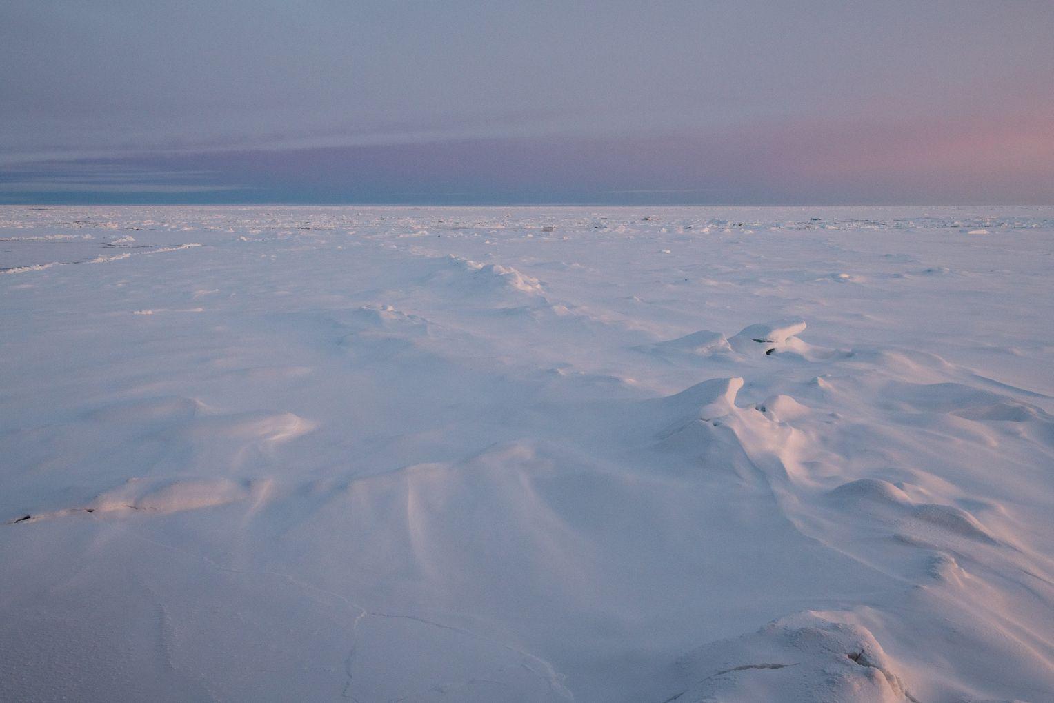 Leere Weite: Wegen solcher Perspektiven sprechen viele Polarforscher vom »Arktisvirus«: Wer davon infiziert ist, will immer wieder dorthin. Foto:Esther Horvath