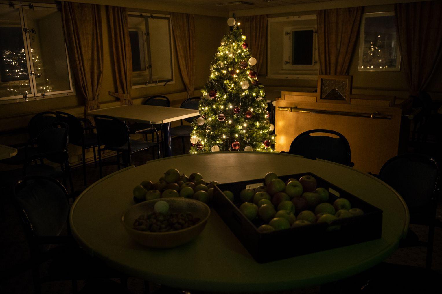Weihnachtsbaum am Pol. Aber für Privates blieb den Expeditionsteilnehmern sonst wenig Zeit. Foto:Esther Horvath